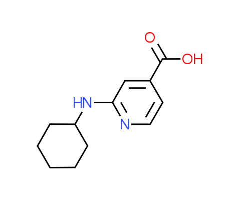 2-(Cyclohexylamino)isonicotinic acid